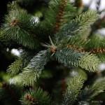 Искусственные елки в Гомеле